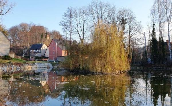 Der idyllische Teich in unmittelbarer Nähe lädt zum Verweilen ein.